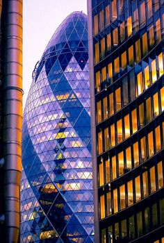 Peeking Tower by Primas +london +city, sunset, blue, buildings, tower, architecture, cityscape, building, office, financial district, gherkin, colourful, business, lloyds, willis, leadenhall, swiss re tower