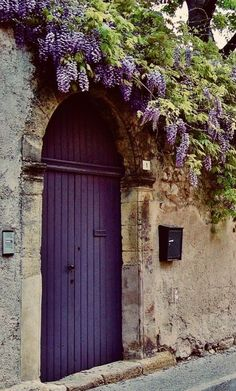 Wisteria in bloom 🌸💐🌸 The purple door Cool Doors, Unique Doors, Entry Doors, Entrance, Purple Wisteria, Purple Door, Purple Front Doors, Garden Gates, Doorway