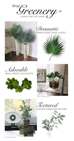 On pinterest artificial succulents green weddings and silk flowers