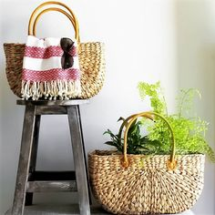 Our rectangle, flat based market baskets made from water hyacinth comes in three great sizes. This is the perfect tote for summer, for the farmers market Grocery Basket, Water Hyacinth, Market Baskets, Picnic In The Park, Homewares Online, Organic Living, Happy Shopping, Sustainability, Marketing