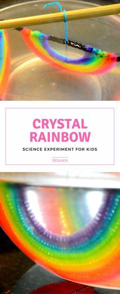 Growing Crystals For Kids - Crystal Rainbow Crystal Rainbow Ornaments Science Kits, Preschool Science, Science Projects, Projects For Kids, Crafts For Kids, Science Ideas, Science Experiments Kids, Science Fair, Science For Kids