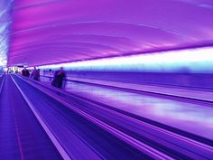 I love the Detroit Airport because of this ethereal tunnel!