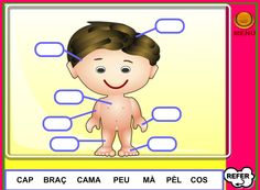 Les parts del cos (PDI)