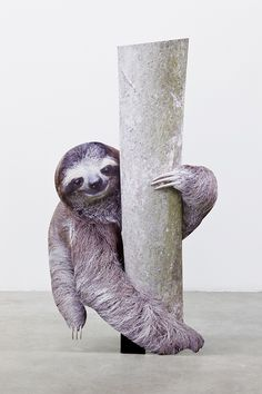 'Branching I', digital print on aluminium dibond, cutout display, x 74 x 20 cm Post Contemporary, Anima Mundi, Perspective Art, Aluminium, Garden Sculpture, Digital Prints, Animals, Berlin, Sloths