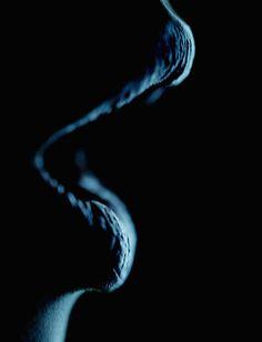 aquadisale:  Dark Lips by ~grooveboxx