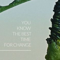You know the best time for change