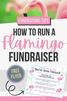 Looking for flamingo fundraising ideas? Learn how to organize a profitable pink flamingo fundraiser for your school, PTA or PTO with our editable flyers, yard signs, and printable order forms. Who knew plastic flamingos would be so great for raising money?! Learn how to create You've Been Flocked instructions and choose suggested donation amounts to ensure your fundraiser is successful at roommomrescue.com Fundraising Events, Creative Fundraising Ideas, Non Profit Fundraising Ideas, Fundraising Activities, Plastic Flamingos, Charity Organizations, School Fundraisers, Pta, How To Raise Money