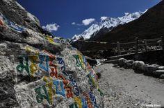 Langtang Himalaya, Nepal