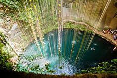 Cenote Ik Kil, Yucatan, Mexico. The Yucatan is covered with cenotes, deep pits that result from the collapse of sections of limestone bedrock, revealing the water table beneath. Ik Kil is located in the archaeological park of the same name, near the Mayan site of Chichen Itza. Its water is swimmable — every day, hundreds of visitors take advantage.  Photo by Milton CJ