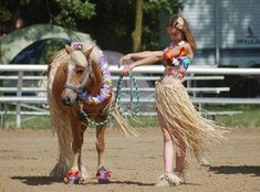 halloween horses   See the Winners of Horse Illustrated's Facebook Costume Contest