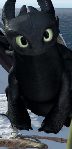 --Dragons- Gift of the Night Fury .... toothless