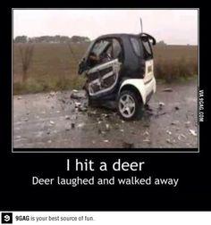 Well, Screw you, Bambi!