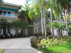 ONE Sotheby's International Realty Fort Lauderdale, Real Estate, Plants, Real Estates, Plant, Planting, Planets
