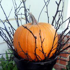 The V Spot: Black paint + everyday objects = Halloween Decor. Halloween Veranda, Halloween Outside, Halloween Make, Outdoor Halloween, Halloween Snacks, Halloween 2020, Holidays Halloween, Halloween Pumpkins, Haunted Halloween