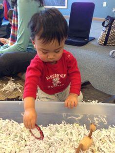 Exploring shredded paper