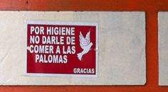 No alimente las palomas.