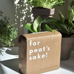 Faire   Online Wholesale Marketplace for Retailers & Brands Best Casual Shoes, Coir, Green Plants, Compost, Indoor Plants, Planter Pots, Recyclable Packaging, Free, Greenery