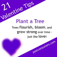 Instead of cutting down trees to make paper Valentines, support the idea of growing and nurturing trees this Valentine's Day. Plant a tree with or for somebody you adore on February 14th! Tip number 8 on our list of fun and eco-friendly Valentine's Day ideas. #valentines #valentinesday #ecofriendly