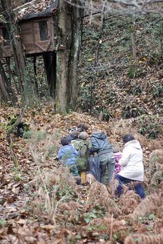 El Bosque Escondido. Un plan maravilloso.