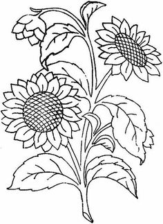 Free Large Printable Sunflower Coloring Pages For Adults . Discover our huge collection of Coloring pages, with numerous categorizations and difficulties degrees. The perfect Anti-stress activity for you personally. Sunflower Coloring Pages, Colouring Pages, Adult Coloring Pages, Coloring Books, Sunflower Drawing, Hand Embroidery Patterns, Ribbon Embroidery, Embroidery Stitches, Embroidery Designs
