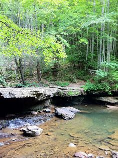 Mash Fork in Camp Creek State Park. When the water is high, this is a waterfall.