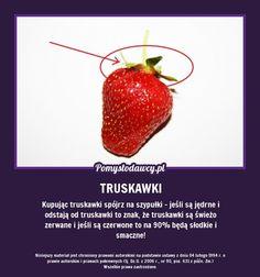 TAK POZNASZ SŁODKIE, ŚWIEŻE I SMACZNE TRUSKAWKI! Creepypasta, Strawberry, Actors, Fruit, Random, Food, Creepy Pasta, Essen, Strawberry Fruit