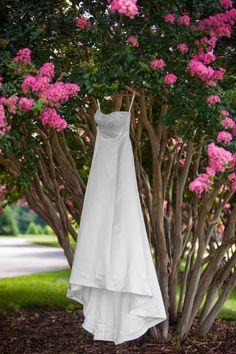 Rand-Bryan House. Raleigh-Garner wedding venue. July on the grounds.