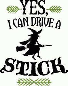 Bahaha!  I can drive a real stick, too!