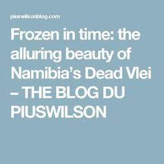 Frozen in time: the alluring beauty of Namibia's Dead Vlei – THE BLOG DU PIUSWILSON