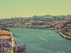 Sunset Avenue ; A la découverte de Porto. Le jardin du palais de cristal