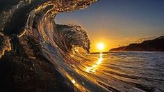 surf - Google Search