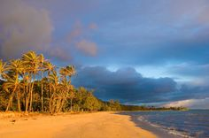 Punalu'u Beach, Hawaii- World's Strangest Beaches