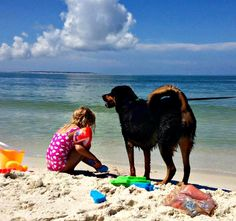 Family fun on the beach at Cape San Blas. For pet-friendly vacation rentals in the area, visit http://www.beachguide.com/CapeSanBlas/GulfCoastVacationRentals.