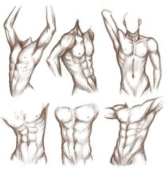 Little bit of male body study for, again, my Dawson portfolio... I really need to wrap this up as quickly as I can @~@ You might notice that one or two poses are inspired by 's poses and body studi...