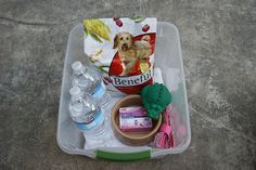 This is my emergency kit for a pet. It contains a towel, food, water, and extra food dish, a leash, a toy, and medicine.