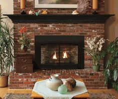 Empire Small Innsbrook Direct-Vent Clean Face Fireplace Insert with Blower – Intermittent Controls - Modern Vented Gas Fireplace Insert, Direct Vent Gas Fireplace, Fireplace Inserts, Gas Fireplaces For Sale, Electric Fireplaces, Fireplace Screens, Faux Brick Panels, Brick Paneling, Propane Fireplace