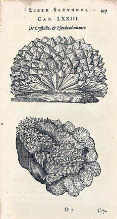 Anselmus Boëtius de Boodt, From Gemmarvm Et Lapidum Historia, 1636