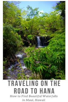 Hawaii is full of waterfalls - but there's nothing more magical than finding one all to yourself. Drive the road to Hana on the island of Maui to discover beauty around every bend. Great road trip ideas for Hawaii, island trip ideas, USA trip ideas and tropical paradise.