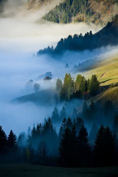 Fog and Autumn Colors in the French Alps