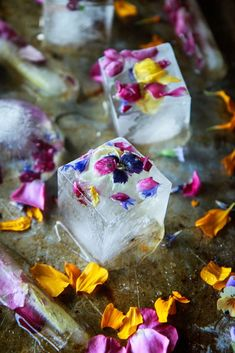 These edible flower ice cubes would be beautiful in a summer or spring punch for a party, shower or brunch! Bridal Party Foods, Flower Ice Cubes, Fruit Ice Cubes, Ice Cube Trays, Flavored Ice Cubes, Recipe T, Dandelion Recipes, Summer Bridal Showers, Bridal Shower Flowers