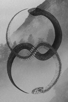 aviculalunae: The Ouroboros, Greek for 'tail swallower'  is depicted as a snake…