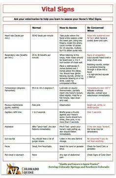 pharmacy tech study guide printable