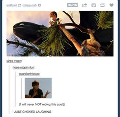 Hiccup is Troy Bolton Confirmed Stupid Funny, Funny Cute, The Funny, Hilarious, Funny Stuff, Httyd, Hiccup, Tumblr Funny, Funny Memes