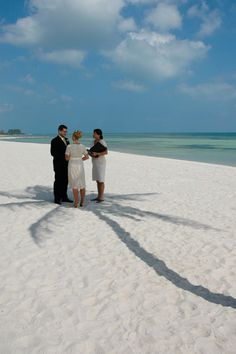 A Key West beach wedding under the shade of a lone palm.