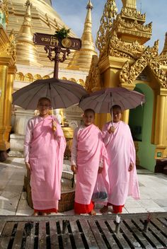 visiting Shwedagon - Rangoon, Yangon- Myanmar
