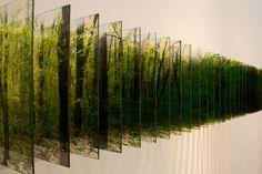 Forest. 30x30x200cm. inkjet print on film with acrylic and plastic. 2012 - Nobuhiro Nakanishi