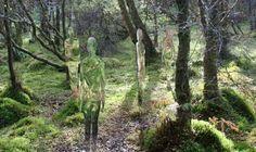 Forrest-blending sculpture.  A must see. http://www.robmulholland.co.uk/