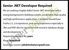 SENIOR .NET DEVELOPER REQUIRED Database Design, Job Ads, Paper, Recruitment Advertising