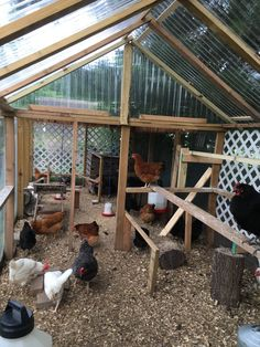Chicken Coop Tips; Fast Solutions For Building Chicken Coop Around The Uk - Readeary Joseph Chicken Coop Designs, Cute Chicken Coops, Chicken Coop Run, Building A Chicken Coop, Inside Chicken Coop, Chicken Roost, Chicken Barn, Chicken Cages, Urban Chickens