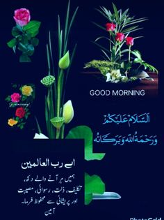 Salam e suba Morning Dua, Morning Prayer Quotes, Good Morning Msg, Morning Prayers, Good Morning Images, Good Morning Quotes, Beautiful Morning Messages, Good Morning Messages, Good Morning Greetings